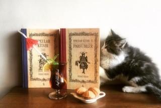Sahibü'l Çay Asaf Osman Efendi