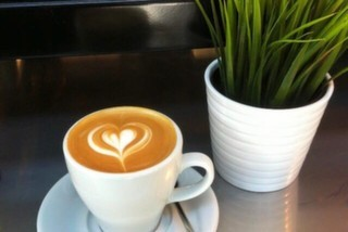 Plethora Of Coffee